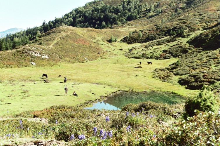 Randonnée Burat Bacanere